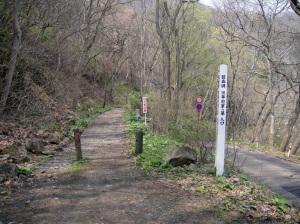 碧血碑への道